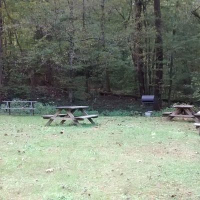 Picnic/grilling area